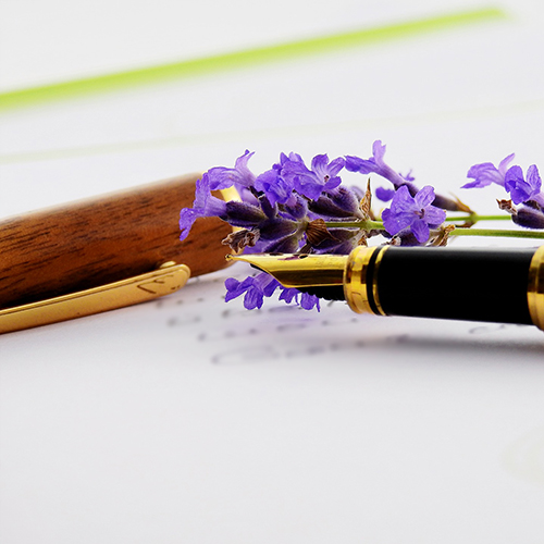 Fountain Pen and Flower